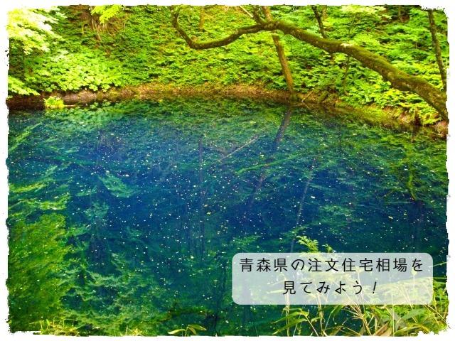 青森県の注文住宅相場を見てみよう